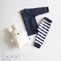 BESS_NOS_boyset